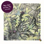 Ian King: Panic Grass & Fever Few (6 Spices 6S229009)